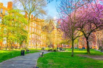 View of the sackville gardens next to the shena slmon campus in Manchester, England