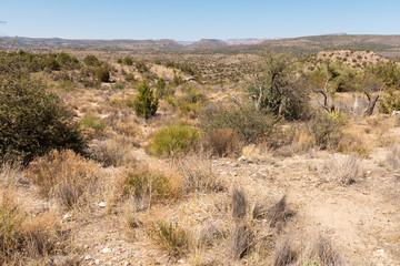 Rocky Arizona desert