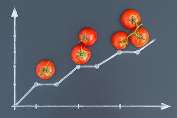 Tomatoes growth concept in the form of a graph. Tomatoes lie on a chalkboard and chalk painted a growth chart