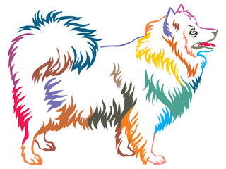 Colorful decorative standing portrait of Japanese Spitz vector illustration
