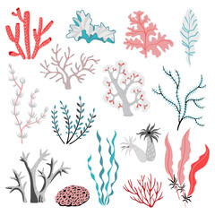 Set of vector illustrations of tropical seaweed and corals.  Sea life. Cute isolated illustrations on white background