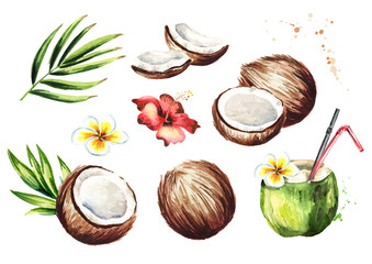 Coconut set. Watercolor hand drawn illustration,  isolated on white background