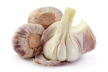 Young big garlic on white