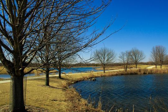 spring landscape Libertyville Illinois