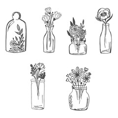 Flowers in vase, hand drawn, sketch vector illustration
