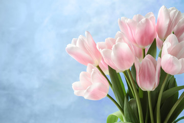 Beautiful tulips for Mother's Day on color background
