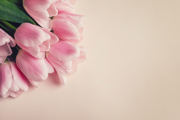 Beautiful tulips for Mother's Day on light background