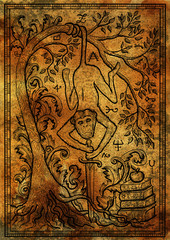 Monkey symbol with sword, books, baroque decorated tree and mystic signs on antique texture background. Fantasy engraved illustration. Zodiac animals of eastern calendar