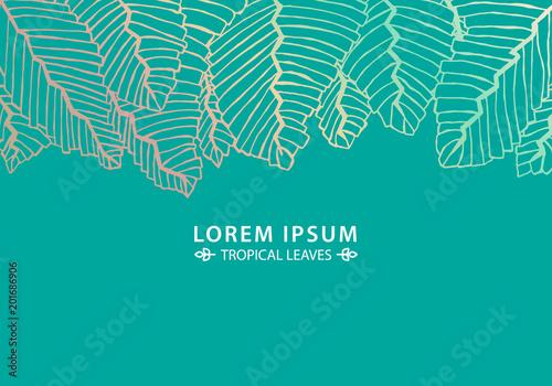 tropical leaves backgroundbusiness card ideadoodle art