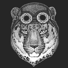 Wild cat Leopard Cat-o'-mountain Panther Hand drawn picture for tattoo, emblem, badge, logo, patch, t-shirt Cool animal wearing aviator, motorcycle, biker helmet.