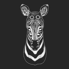 Cool animal wearing aviator, motorcycle, biker helmet. Zebra Horse Hand drawn illustration for tattoo, emblem, badge, logo, patch