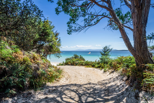 Amazing view to small paradise like island sandy beach with turquoise blue water and green shore jungle forest on warm sunny clear sky day camping ground, Jetty Beach Bruny Island, Tasmania, Australia