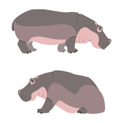 Vector illustration of walking and sitting hippopotamuses isolated on white background