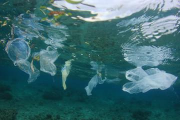 Plastic pollution in ocean