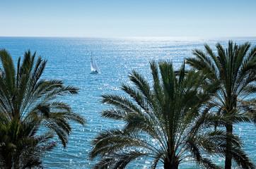 Playa de Casablanca, Marbella, Andalusia, Spain