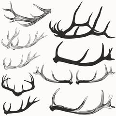 Big set of vector hand drawn deer horns