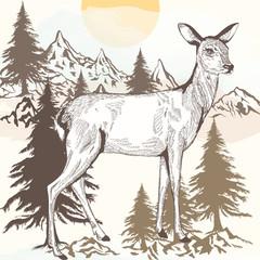 Hand drawn engraved deer vector illustration