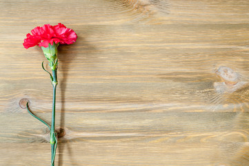 9 May background with red carnation on the wooden table