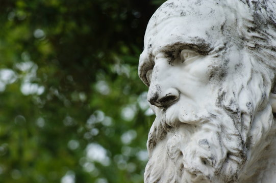 white marble statue of man with beard in detail