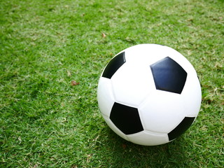 Soccer ball on green grass background in the park.