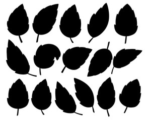 Set of black leaves. Various shapes of leaves of trees and plants. Floral, foliage design elements. Vector illustration isolated on white background. Website page and mobile app design