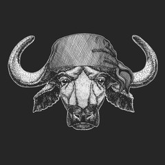 Buffalo, bull, ox Cool pirate, seaman, seawolf, sailor, biker animal for tattoo, t-shirt, emblem, badge, logo, patch. Image with motorcycle bandana