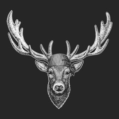 Deer Cool pirate, seaman, seawolf, sailor, biker animal for tattoo, t-shirt, emblem, badge, logo, patch. Image with motorcycle bandana
