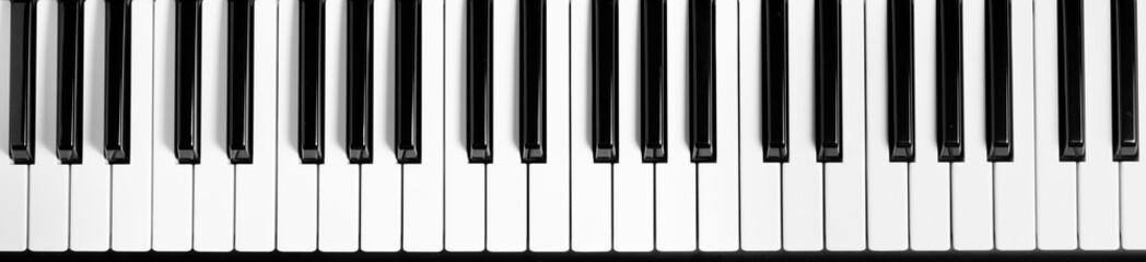 Piano keyboard. Flat top view