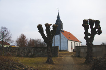 Trees with renaissance church in background