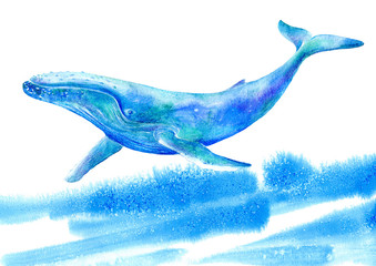 Big Blue Whale and wave .Watercolor hand drawn illustration.Underwater animal art. White background.