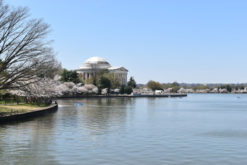 Closeup of Famous Jefferson Monument on Lake Tidal Basin in Washington D.C in the USA