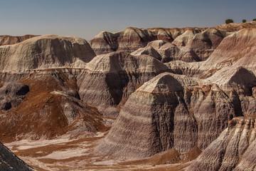 Petrified Forest National Park, Arizona USA