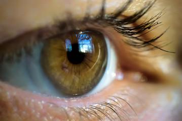 Macro image of human eye with contact lens