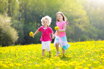 Kids play. Child in dandelion field. Summer flower