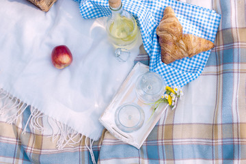 Wine and croissants on a picnic. Free space for text