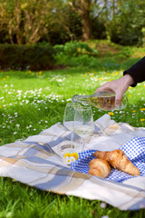 Two glasses of wine. A man's hand pours wine. Picnic in a clearing with flowers. Spring in the Netherlands. Place for text. holidays