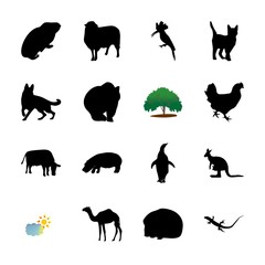 icon Animal with badge, wildlife, wild, pussycat and small