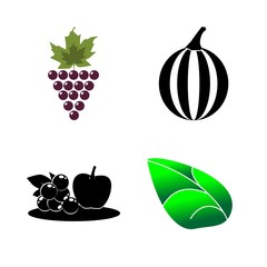 icons about Food with fruit, organic, watermelon, jelly apple and leaf