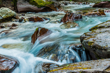 Aluminium Prints Forest river Mountain Stream