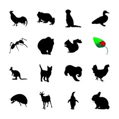 icon Animal with ladybird, wildlife, desing, pet and horn