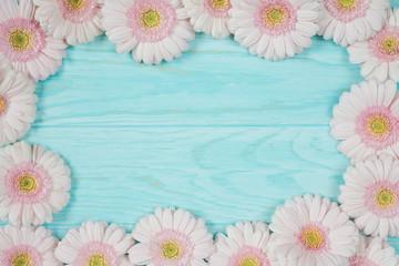 Pink fresh gerbera flowers on blue background