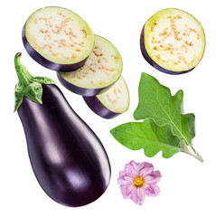 Aubergine or eggplant, aubergine flower, leaves and slices. Clipping path.