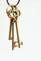 House key with home keyring on white background