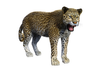 Foto op Aluminium Luipaard 3D Rendering Big Cat Leopard on White