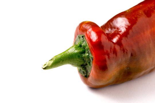 Red organic snack pepper, bellpepper
