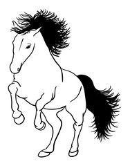 Horse line art 05. Good use for symbol, logo, web icon, mascot, sign, or any design you want.