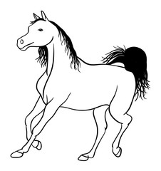 Horse line art 04. Good use for symbol, logo, web icon, mascot, sign, or any design you want.