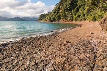 sandy beach near Picton in Marlborough Sounds, South Island, New Zealand