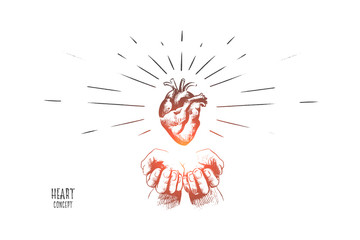 Heart concept. Hand drawn human heart in hands. Concept of healthcare, heart diseases isolated vector illustration.