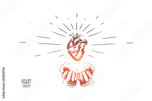 Heart Concept Hand Drawn Human Heart In Hands Concept Of